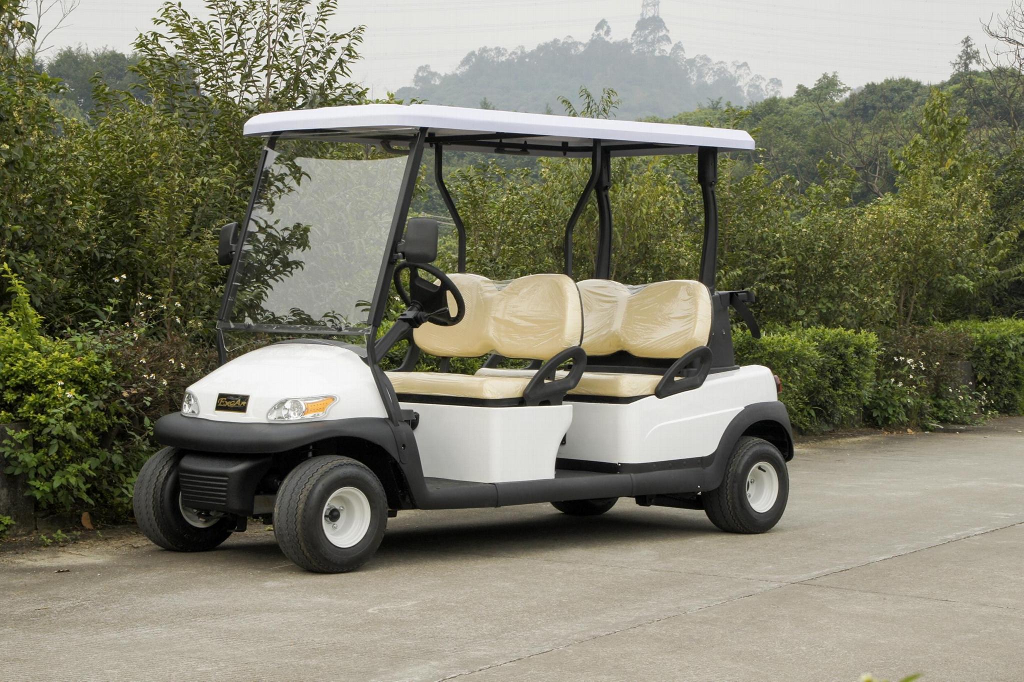 珠海大丰和4座电动高尔夫球车 1