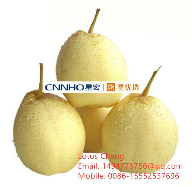 Ya pear 2