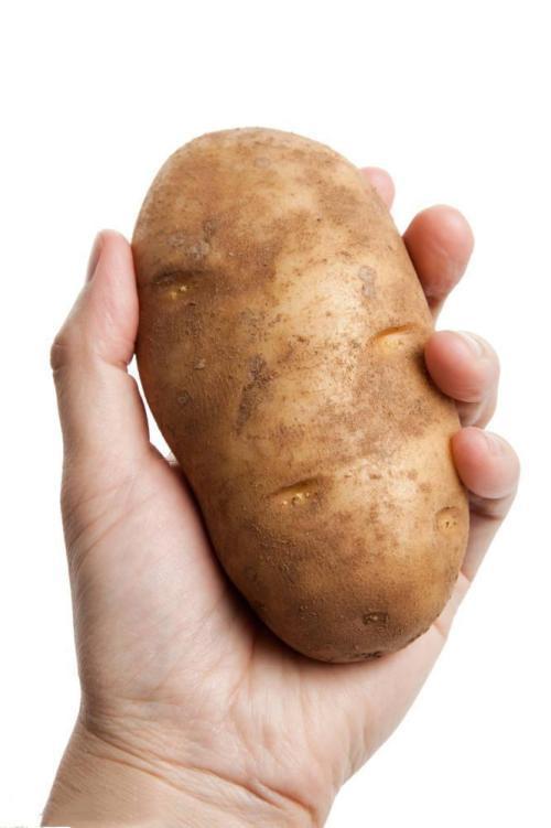 Organic New Harvest Fresh Potato 3