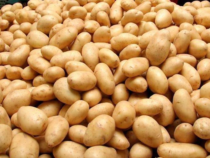 Organic New Harvest Fresh Potato 5