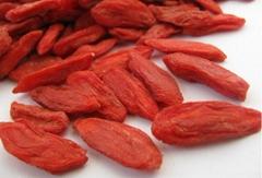 Health food dried organic berry goji