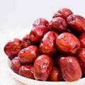Origanic red dates