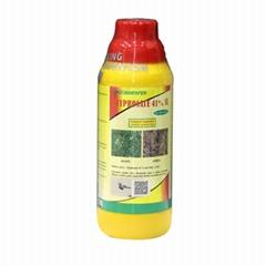 King Quenosn FAO Glyphosate Pesticides Herbicides Company