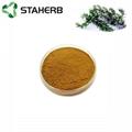 Rosemary extract Rosmarinic acid 5% 8