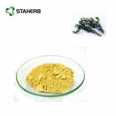 Ursolic acid 25%