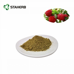 杨梅素98%bayberry bark extract myricetin 98%