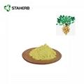 Peanut shell extract Luteolin 5