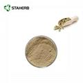 green coffee bean extract chlorogenic acid 2