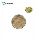 green coffee bean extract chlorogenic acid 3