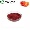 西紅柿提取物番茄紅素2%tom