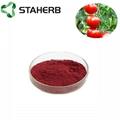 tomato extract lycopene 2%