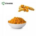 tumeric extract curcumin 2