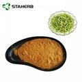 金银花提取物Honeysuckle flower extract 1