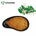 金银花提取物Honeysuckle flower extract 2