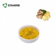 生姜提取物姜辣素ginger extract ginerol 5%