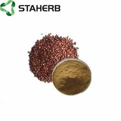 葡萄籽提取物grape seed extract OPC 95%
