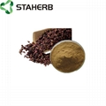 grape seed extract OPC 95% 3