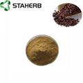 葡萄籽提取物grape seed extract OPC 95% 4