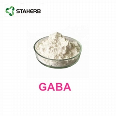 伽馬-氨基丁酸γ-aminobutyric acid GABA