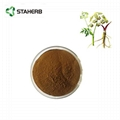 Angelica root extract ligustilide