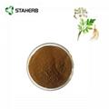 Angelica root extract ligustilide