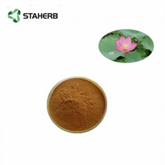荷葉提取物荷葉碱lotus leaf extract Nuciferin