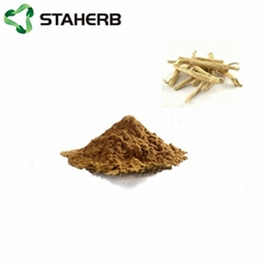 東革阿里提取物Tongkat Ali extract