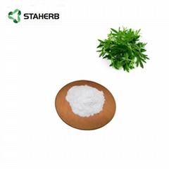 黄蒿提取物青蒿素Artemisia carvifolia Extract Artemisinin powder