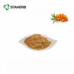 Sea buckthorn fruit extract Total Flavonoids of Hippophae