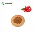 pomegranate extract ellagic acid 40%