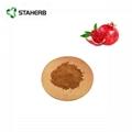 pomegranate extract ellagic acid 40% 3