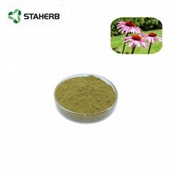 紫錐菊提取物菊苣酸2% Echinacea Purpurea Extract Cichoric acid 2%