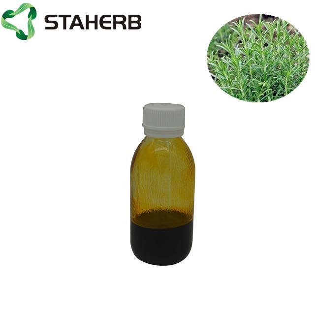 rosemary oil of carnosic oil 3