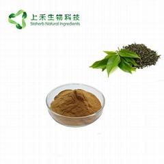black tea extract  polyp