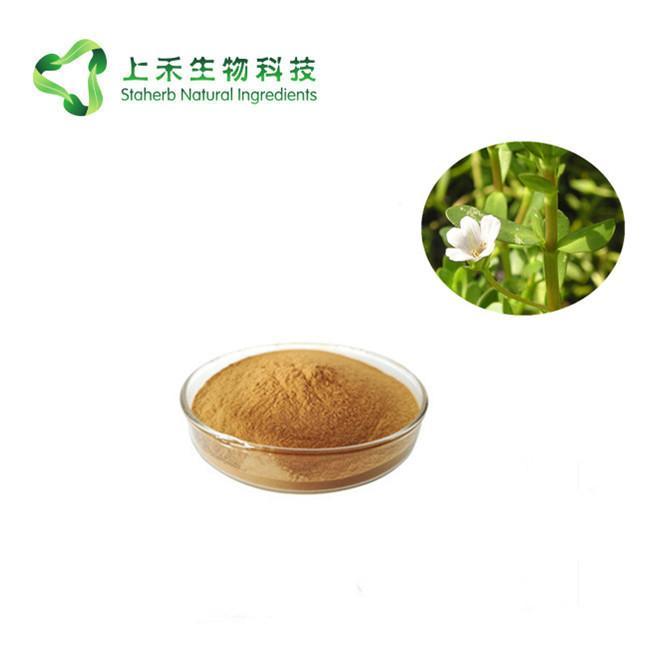 bacopa monnieri brahmi extract 50% bacoside 1