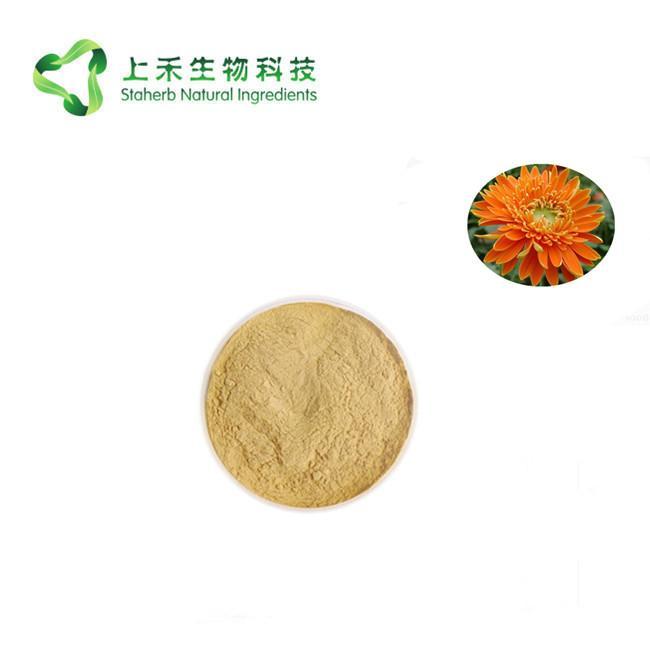 Barberton daisy extract powder 1