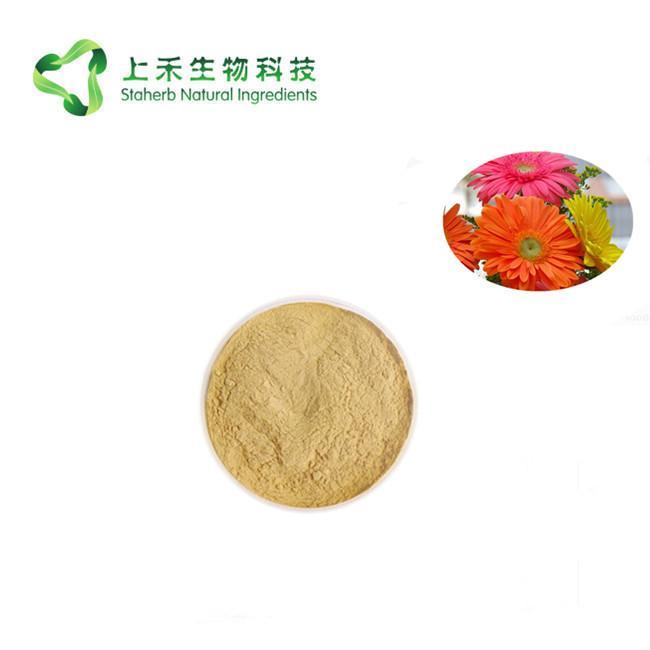 Barberton daisy extract powder 2