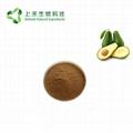 avocado extract alligator pear extract