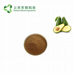 avocado extract alligator pear extract powder