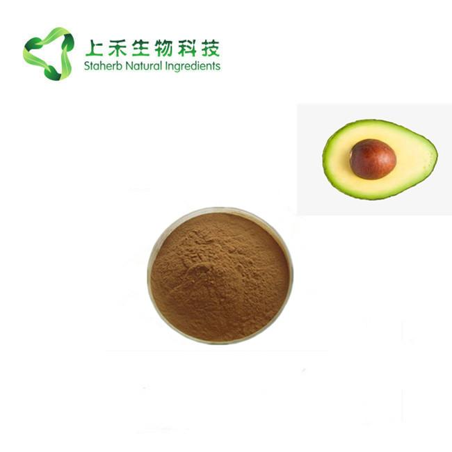 avocado extract alligator pear extract powder 3