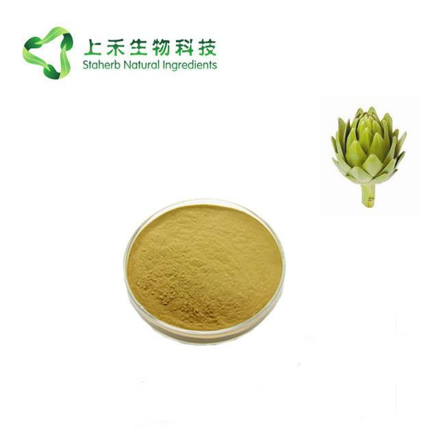Natural artichoke extract Cynarin powder 2