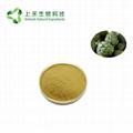 Natural artichoke extract Cynarin powder 3