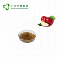 apple extract apple polypenols