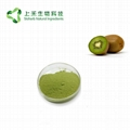 kiwi fruit juice powder