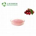 Acerola cherry Extract Vitamin C