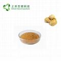 lion's mane mushroom extract 30% polysaccharide