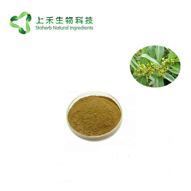 gymnema sy  estne extract Gymnemic Acid 2