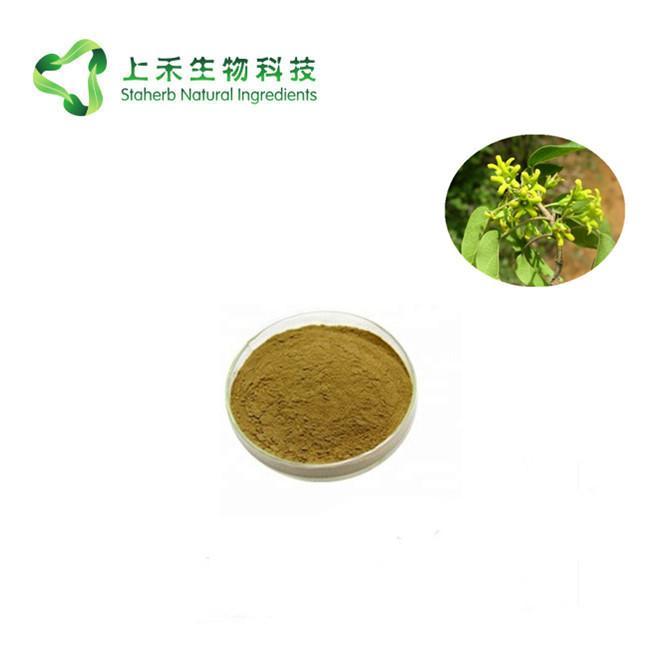 gymnema sy  estne extract Gymnemic Acid 3
