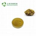 Amur Corktree Bark Extract 98% Berberine