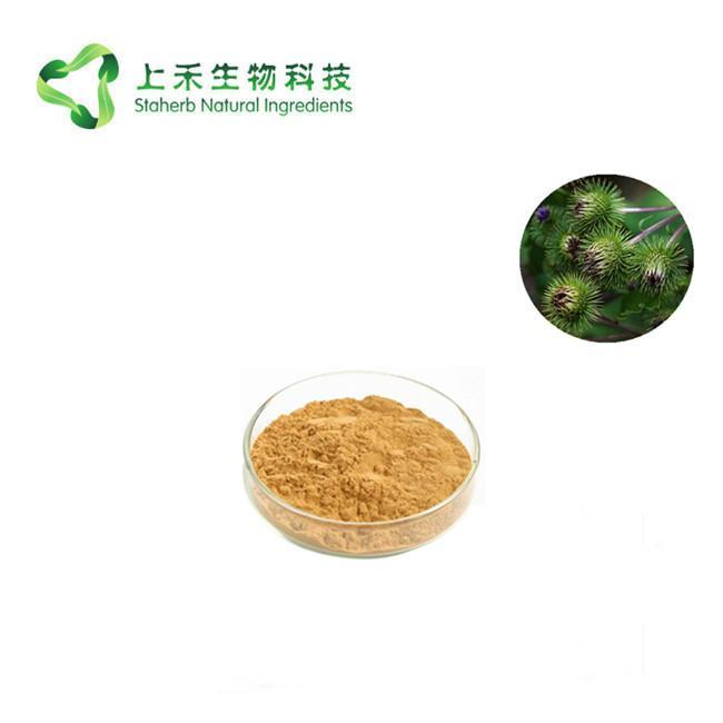 Great Burdock Achene Extract 1